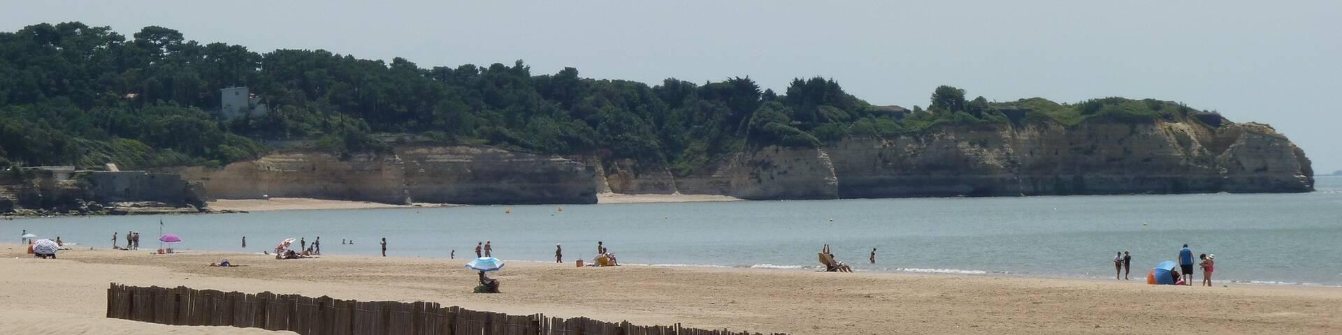 Het strand van Saint-Georges en de Pointe de Suzac - ©P.Migaud / FDHPA17